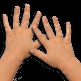Alle meine Finger